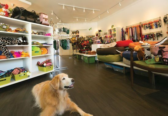 Importação de produtos para pet shop da China